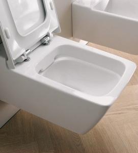 spuelrandloses wc wasserverbrauch