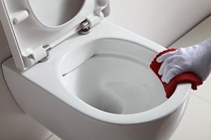 vorteile spuelrandloses wc